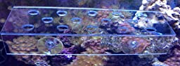 ReefCreators.com Medium Clear Frag Rack For Corals and Frag Plugs Holding 14 Plugs