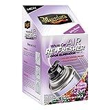 febreeze auto air freshener - Meguiar's G16802 Whole Car Air Refresher Odor Eliminator (Spring Blossom Scent), 2.5 oz.