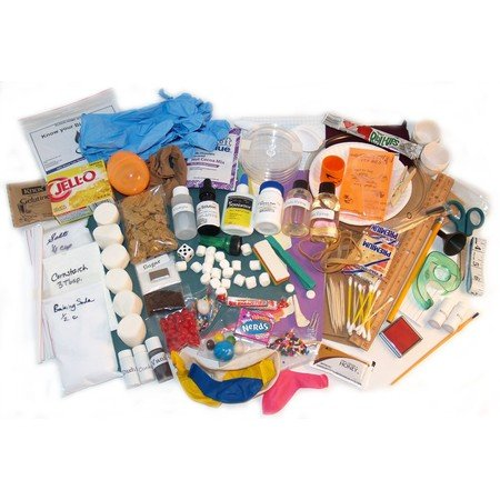 Apologia Anatomy and Physiology Lab Kit   Everything You Need for Exploring Creation with Human Anatomy and Physiology By: Nature's Workshop Plus!