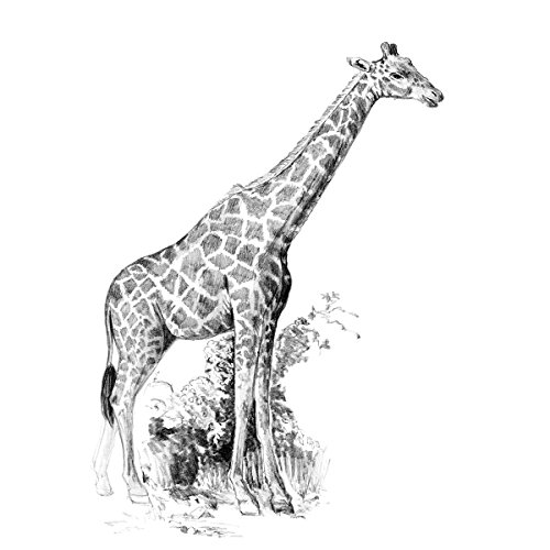 Royal Brush Sketching Made Easy Giraffe Mini Kit, 5