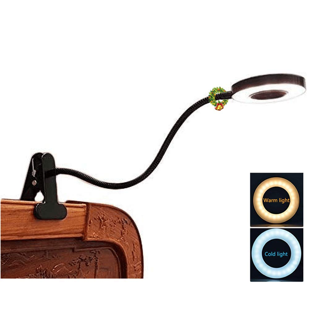 Adapter Included Black Eye-Care 2 Light Color Switchable W-LITE 6W LED USB Reading Light Clip Laptop Lamp for Book,Piano,Bed Headboard,Desk