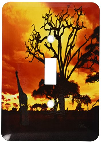 3dRose lsp_173293_1 African Giraffe On African Plains At Sunset, Animal Safari Africa Toggle Switch by 3dRose