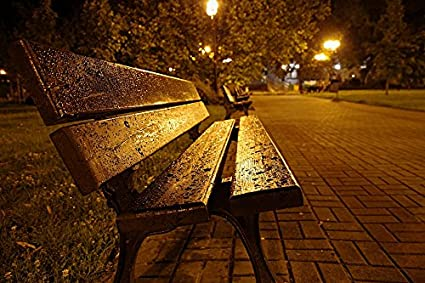 Amazon Com Home Comforts Laminated Poster Park Bench Wet Night City