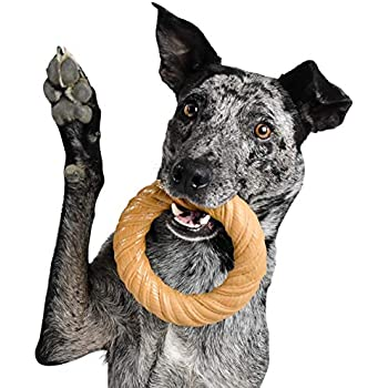 Made in USA with FDA Compliant Nylon Durable Toys for Aggressive Chewers for Medium Dogs Pet Qwerks Flavorit Mesquite Chicken Flavor Infused Nylon Chew- fillable Surface for Spreads