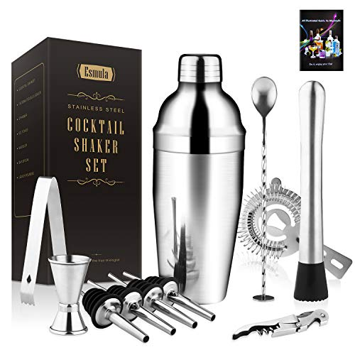 Cocktail Shaker Set 11 Piece, 25oz Stainless Steel Bartender Kit Professional Martini Mixing Bartending Kit Combination, Home Stylish Bar Tool Set