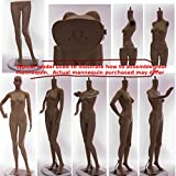 Realistic Standing Female Adult Mannequin + Base