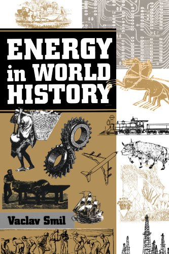 Energy In World History  Essays In World History