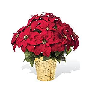 PETALS – Large Premier Silk Poinsettia – Handcrafted – Amazingly Lifelike – 23 x 22 Inches (Red)