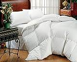 Alternative Comforter - Super King Oversized California King Down Alternative Comforter (120