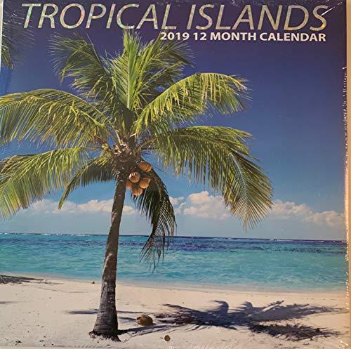 2019 Wall Calendar - Island Paradise -12 Month- 12x24 inches (12