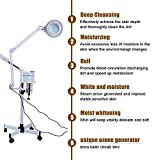 3 in1 5X Magnifier Floor Lamp + Cold Light LED UV Ozone Facial Steamer for Skin Care Clean Spa Salon