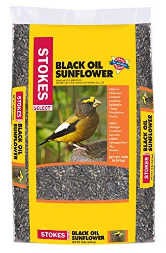 - Stokes Select STK5434-10 Premium Black Oil Sunflower (10 lbs)