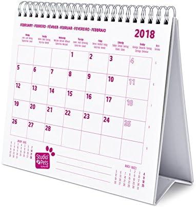 Grupo Erik Editores Calendario Sobremesa Deluxe 2018 Studio Pets ...