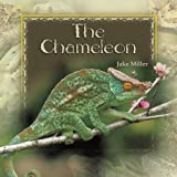 The Chameleon, Jake Miller, 1404255737