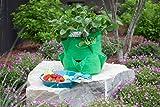 BloemBagz Strawberry Planter Grow Bag, 9 Gallon, Calypso (SBP-27)