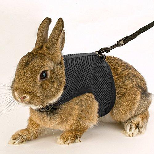 [Calunce Soft Rabbits Harness with Leash (black 1pcs)] (Rabbit Leads)