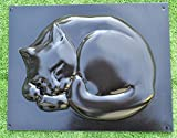 CAT STEPPING Stone Mold Mold plaster Concrete GARDEN PATH 14,6