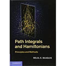 Path Integrals and Hamiltonians: Principles and Methods