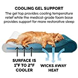 Furhaven Pet Dog Bed - Cooling Gel Foam Minky Plush and Velvet Ergonomic Luxe Lounger Cradle Mattress Contour Pet Bed with Removable Cover for Dogs and Cats, Spruce Blue, Jumbo