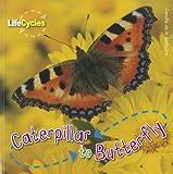 Caterpillar to Butterfly, Camilla De la Bédoyère, 1926853369