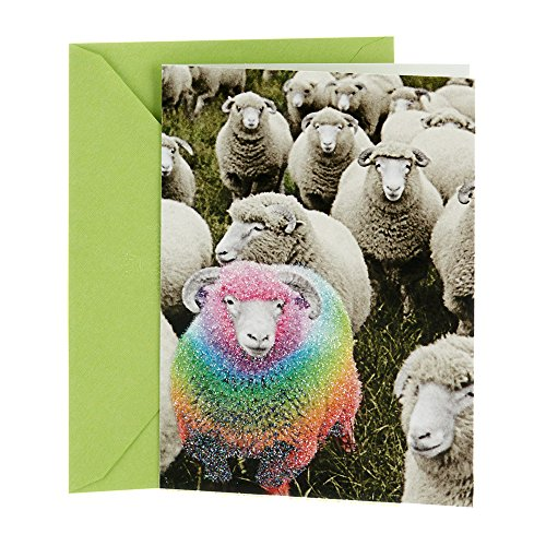 Hallmark Shoebox Funny Birthday Greeting Card (Rainbow Sheep)