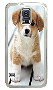 Samsung Galaxy S5 personalized cover Pets Cute Animals PC Transparent Custom Samsung Galaxy S5 Case Cover