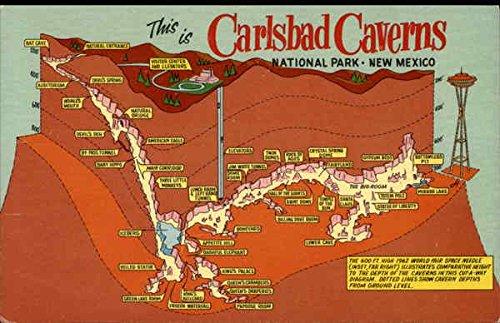 Depth Map of Carlsbad Caverns National Park Original Vintage - Map Crocker Park