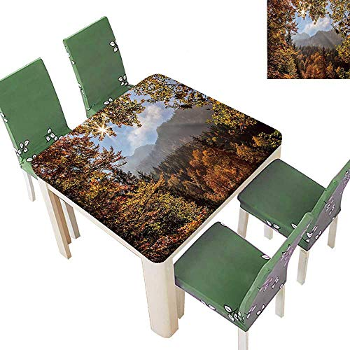 Printsonne Fitted Polyester Tablecloth at Autumn Forest in Bavaria Alps Germany Rural Scenery Picture Golden Green Orange Washable for Tablecloth 23 x 23 Inch (Elastic Edge)