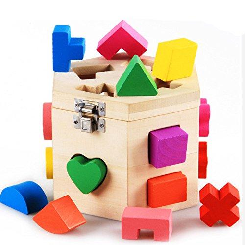 Darius 15 Holes Hexagonal Intelligence Box Shape Matching Blocks