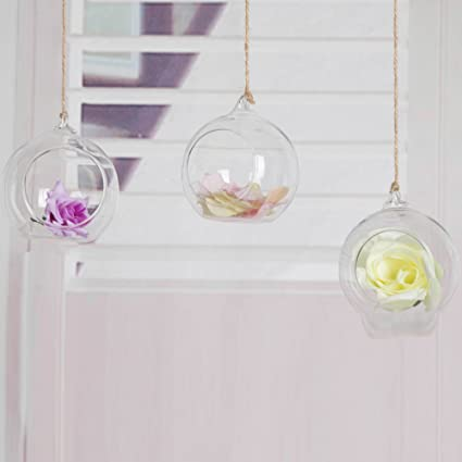 Amazon Com Round Glass Orb Terrarium Air Plant Terrarium Votive