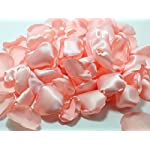 Blush-Rose-Petals-Wedding-Rose-Petals-Pink-Petals-Wedding-Decoration-100-pcs-L93