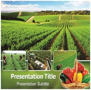 Amazon Com Organic Farming Powerpoint Template Powerpoint