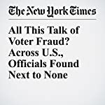 All This Talk of Voter Fraud? Across U.S., Officials Found Next to None | Michael Wines