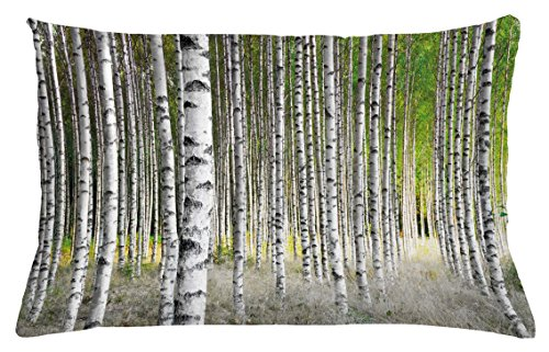 Family Tree Throw (Ambesonne Birch Tree Throw Pillow Cushion Cover, Peaceful Late Summer Woodland Trunks Leaves Foliage Serene Tranquil, Decorative Accent Pillow Case, 26 W X 16 L Inches, Green Pale Grey Black)