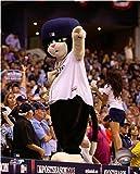 "DJ Kitty Tampa Bay Rays 2014 MLB Action Photo (Size: 8"" x 10"")"