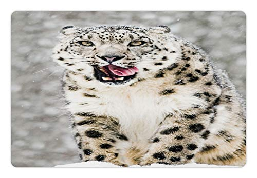 (Lunarable Snow Pet Mat for Food and Water, Frontal Portrait of a Snow Leopard Licking its Teeth in a Stormy Blurred Backdrop, Rectangle Non-Slip Rubber Mat for Dogs and Cats, Multicolor )