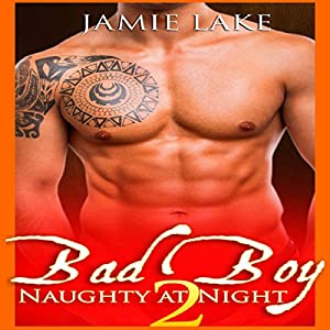 Bad Boy: Naughty at Night 2 Audiobook