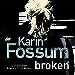 Broken   Karin Fossum