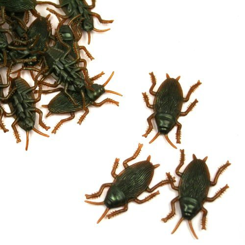 U.S. Toy Plastic Cockroaches : Package of -