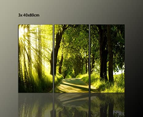 TOP PREIS Wandbild 130x80 cm (green_light_3x40x80 cm) Natur grün ...