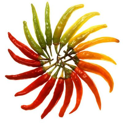 HeirloomSupplySuccess 25 Heirloom Hot Serrano Chili Pepper Seeds : Home And Garden Products : Garden & Outdoor