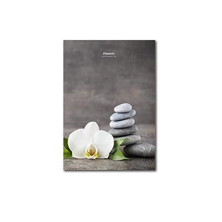 La Flor del Estilo Chino Pintura Zen Phalaenopsis Ornamental ...