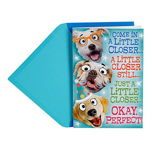 Hallmark Funny Father's Day Greeting Card from All (Dog Pop-Up Group Hug)
