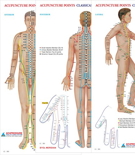 Acupuncture Meridians Chart (Acupuncture Points Chart - Meridians - Set of 3 Wall Chart – 2016)