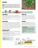 Plant Combinations for an Abundant Garden: Design