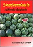 50+ Amazing Watermelon Growing Tips: A Quick Reference Guide To Growing Watermelons