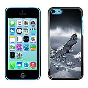 Be Good Phone Accessory // Dura Cáscara cubierta Protectora Caso Carcasa Funda de Protección para Apple Iphone 5C // flying eagle America patriotic bald snow