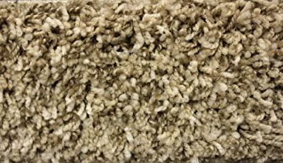 Indoor Area Rug - Bramble 40 oz - plush textured carpet for residential or commercial use with Premium BOUND Polyester Edges.