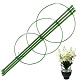 ASSR Small Climbing Plants Support, Flowes Tomato Cages Stand for Garden Trellis
