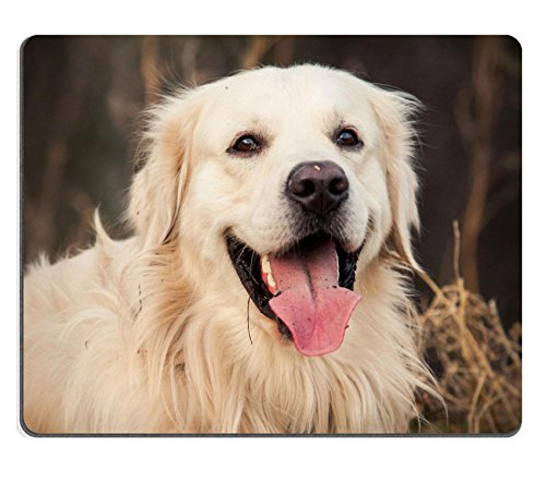 msd-customized-natural-rubber-mouse-pad-personalized-custom-picture-young-golden-retriever-dog-with-